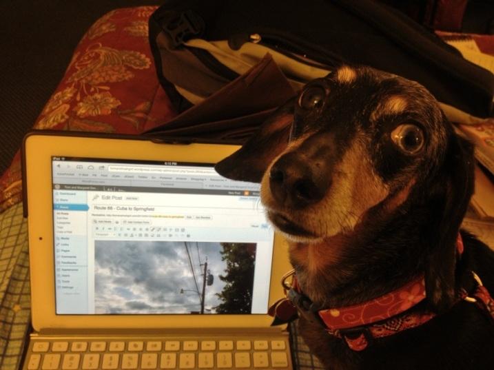 Jasmine helps me blog