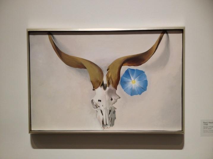 O'Keeffe Skull