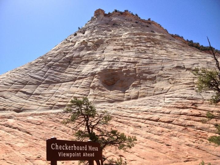 Checkerboard Mesa - Zion