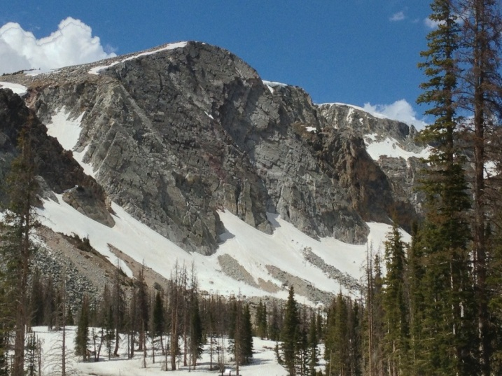 Snowy Ridge - Medicine Bow National Forest