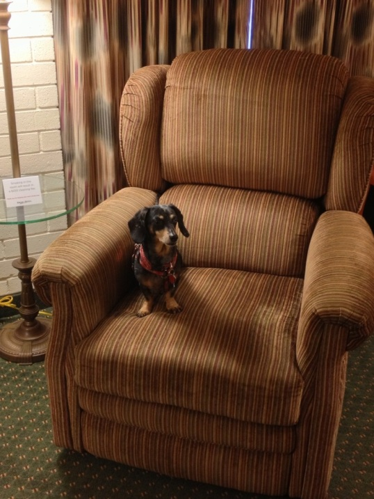 Jasmine loves the Drury Inn & Suites