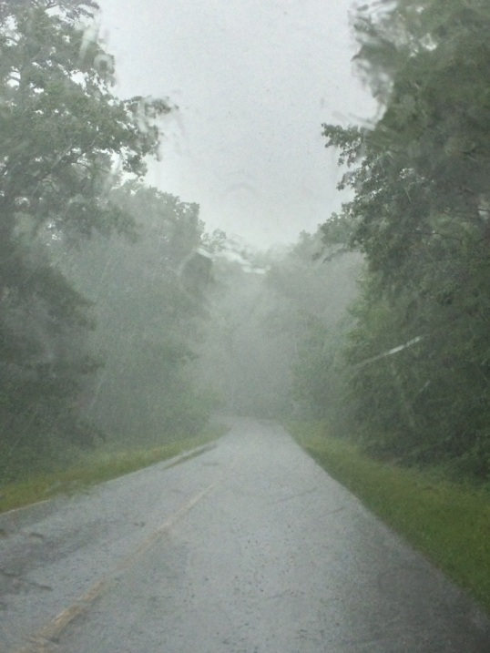 Today's rainy and foggy open road - Blue Ridge Parkway